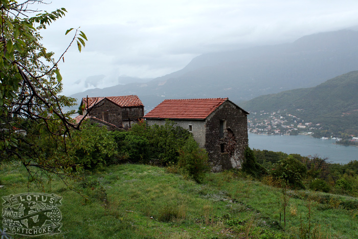 Montenegro: Village on a Hill - The Lotus and the Artichoke